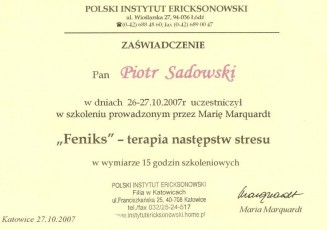 8-Terapia-Nastpstw-Stresu